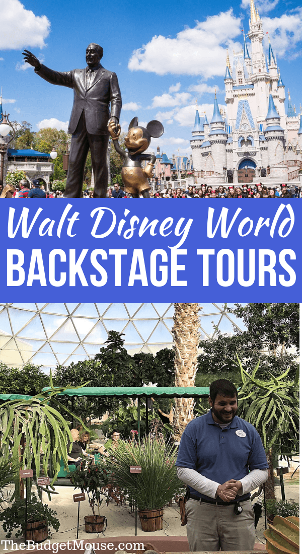 All about behind the scenes tours at Walt Disney World! Learn how to get discounts on backstage tours, what tours are available, and Disney World secrets and tips. #disneyworld