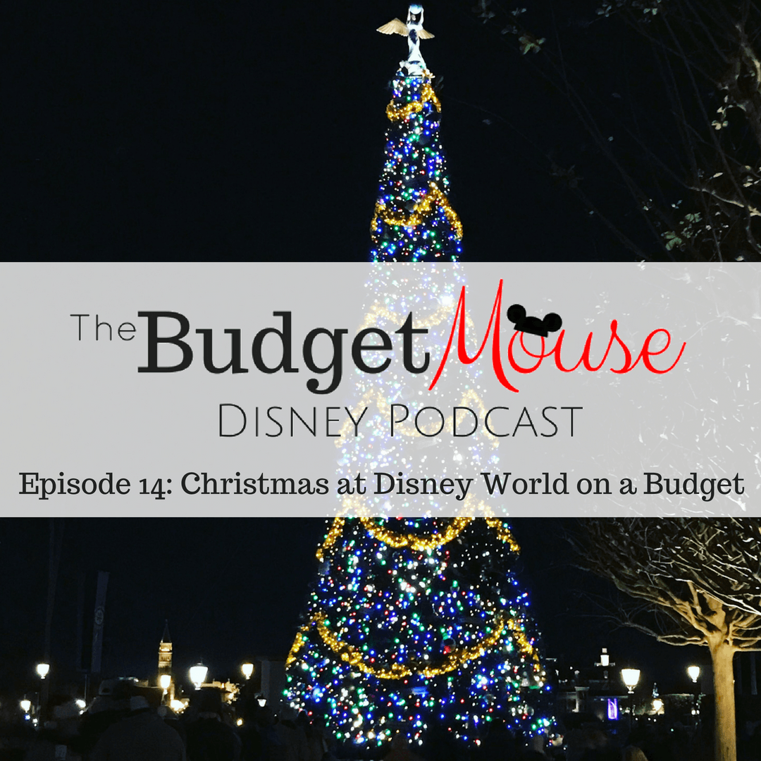 budget mouse podcast image with lighted tree at night