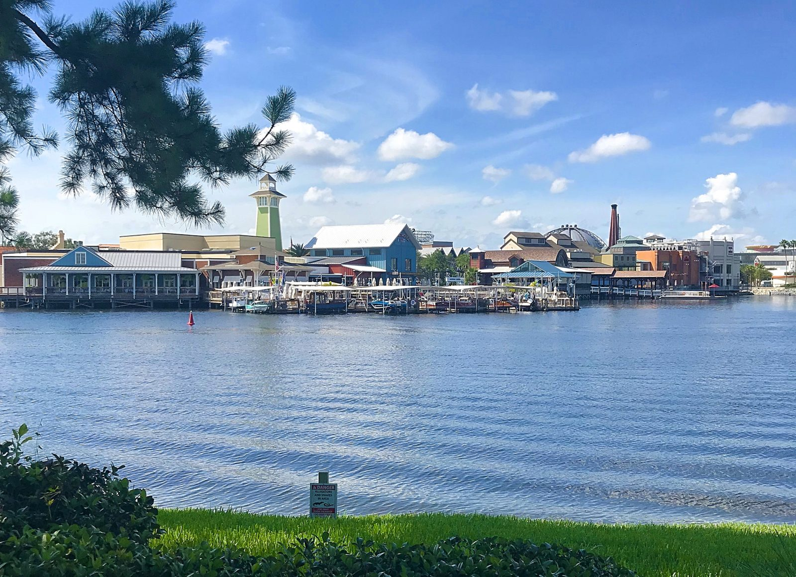 Disney Springs from Congress Park