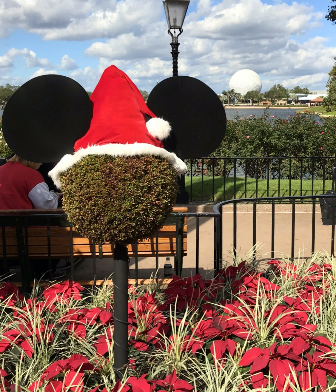 plant to look like mickey mouse with a santa hat on top