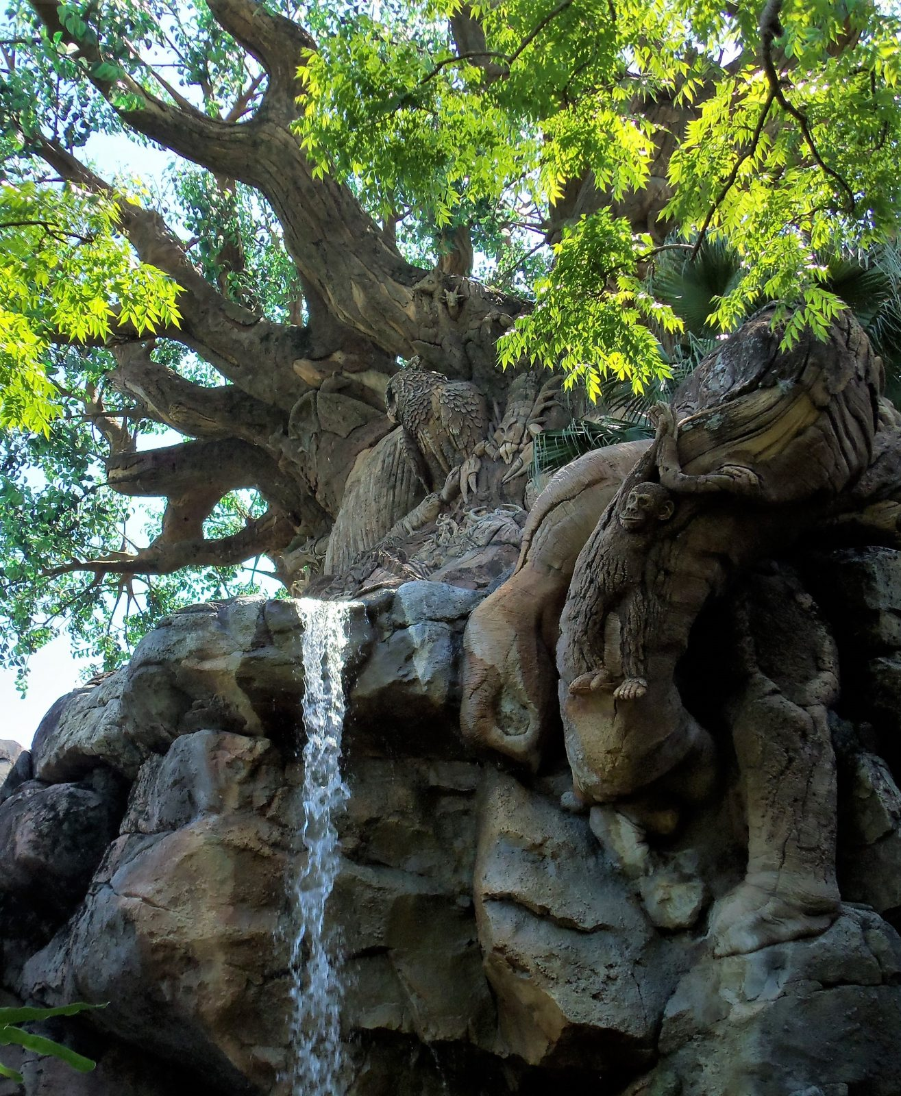waterfall and tree of life at animal kingdom