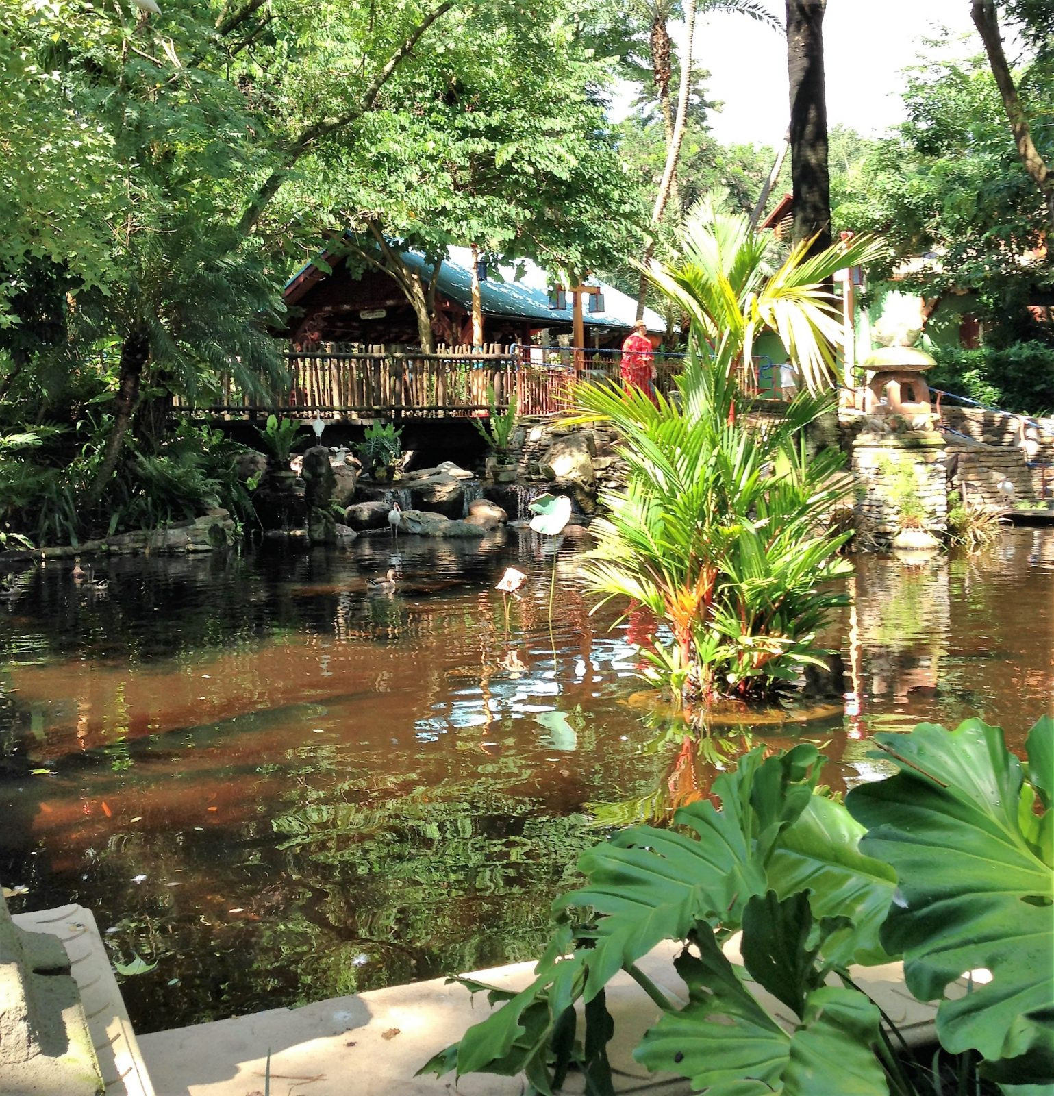 dining area at flame tree barbecue