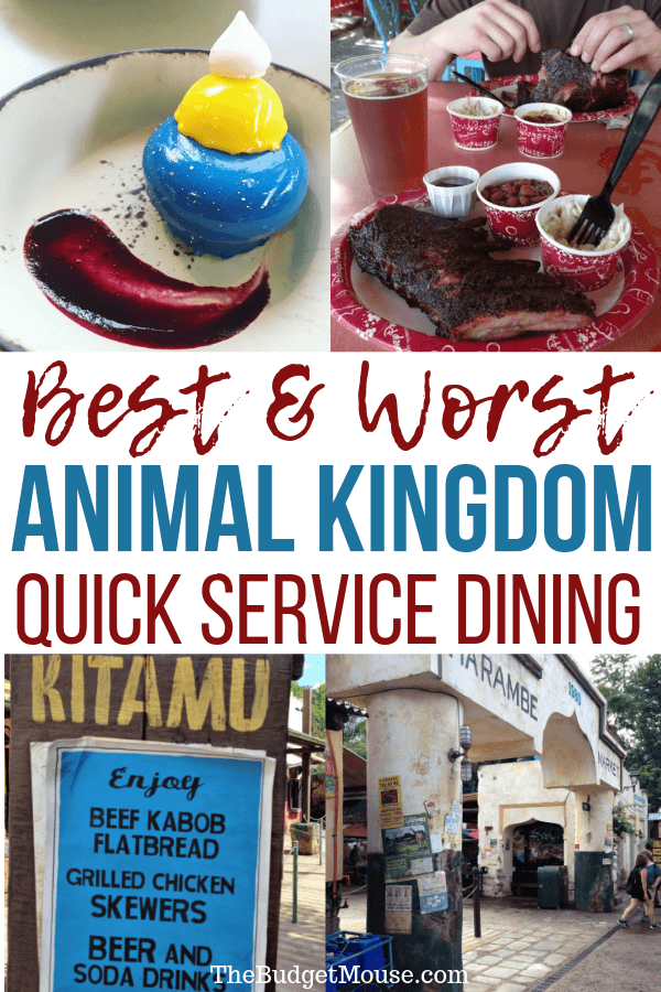 The best and worst quick service dining at Animal Kingdom! Get the lowdown on what to eat at Disney Animal Kingdom counter service restaurants. #animalkingdom #disneydining #animalkingdomquickservice #quickservice #disneyworldfood #disneyworlddining #disneyworldrestaurants #disneyworldonabudget #disneyworldtipsandtricks