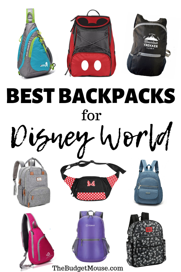 best backpacks for disney world pinterest image