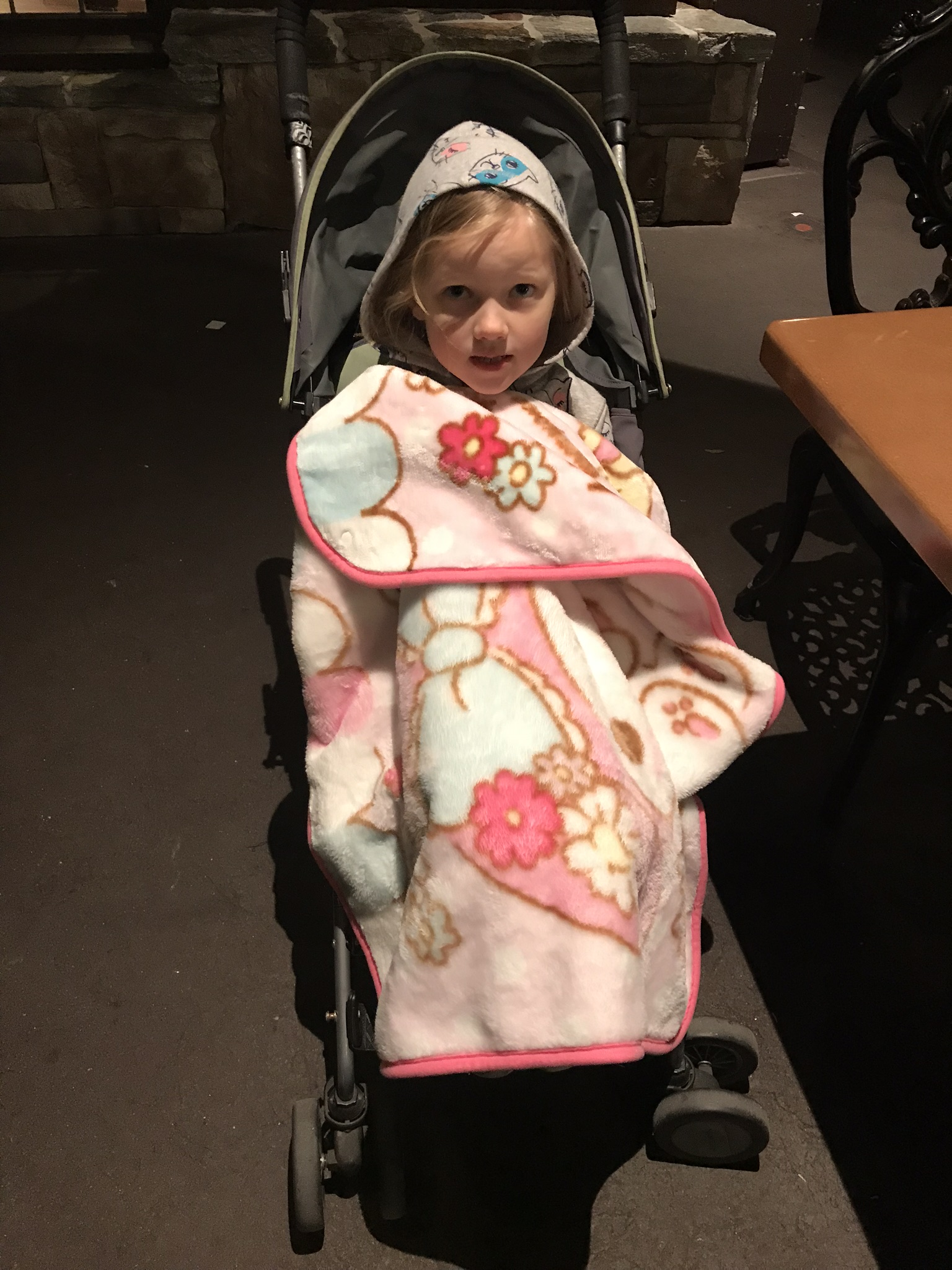 little girl in a stroller with a blanket