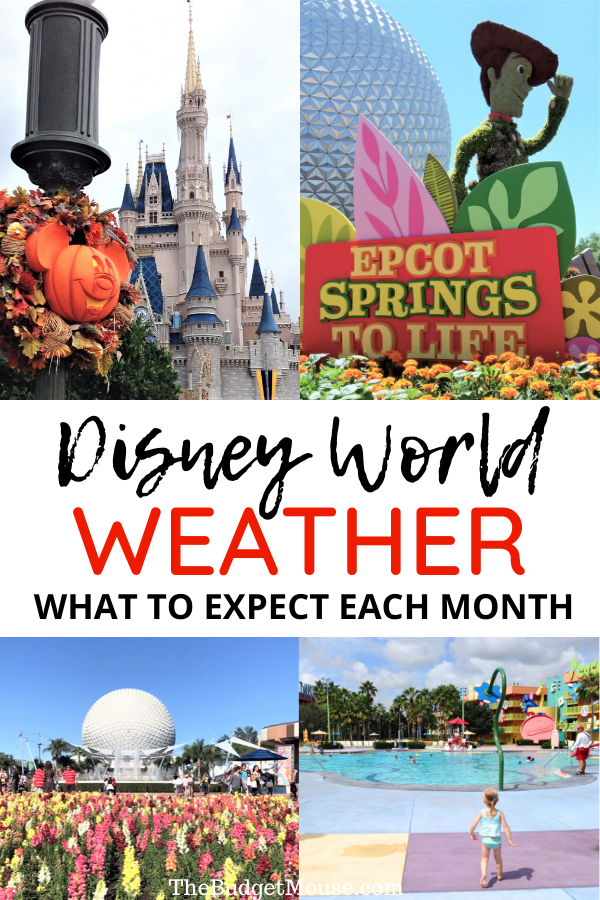 disney world weather what to expect each month pinterest image