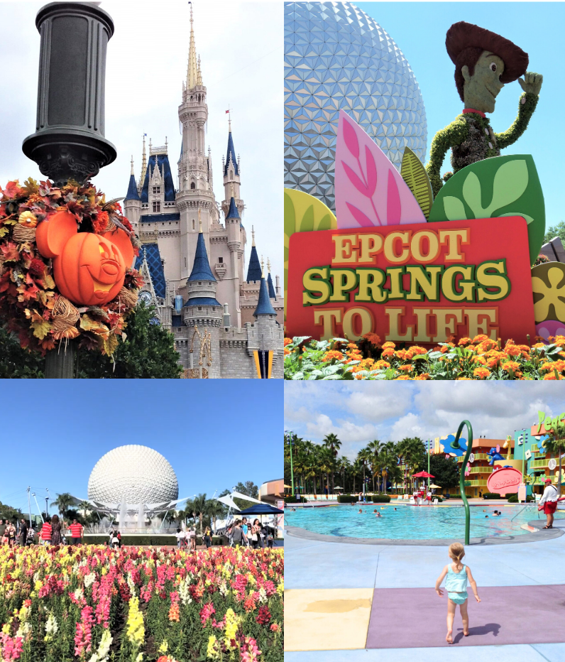 photos of different seasons at disney world