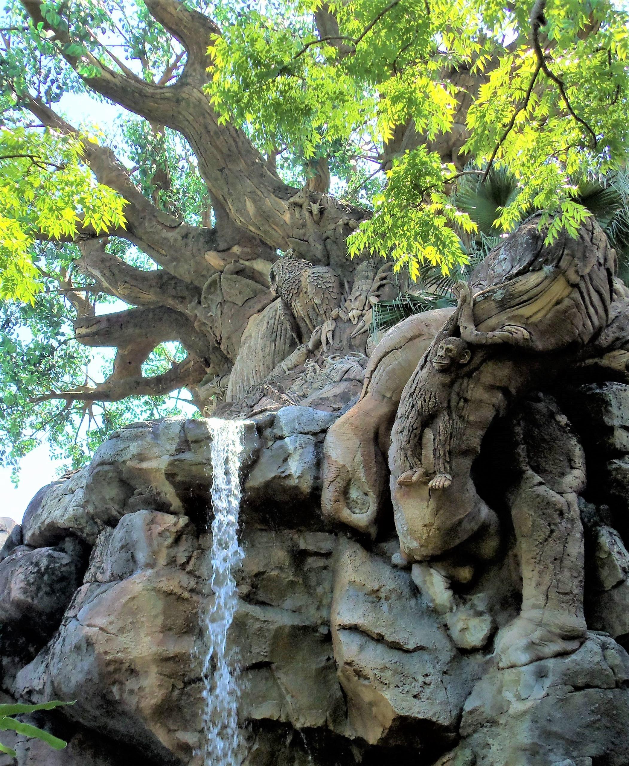 tree and waterfall in animal kingdom