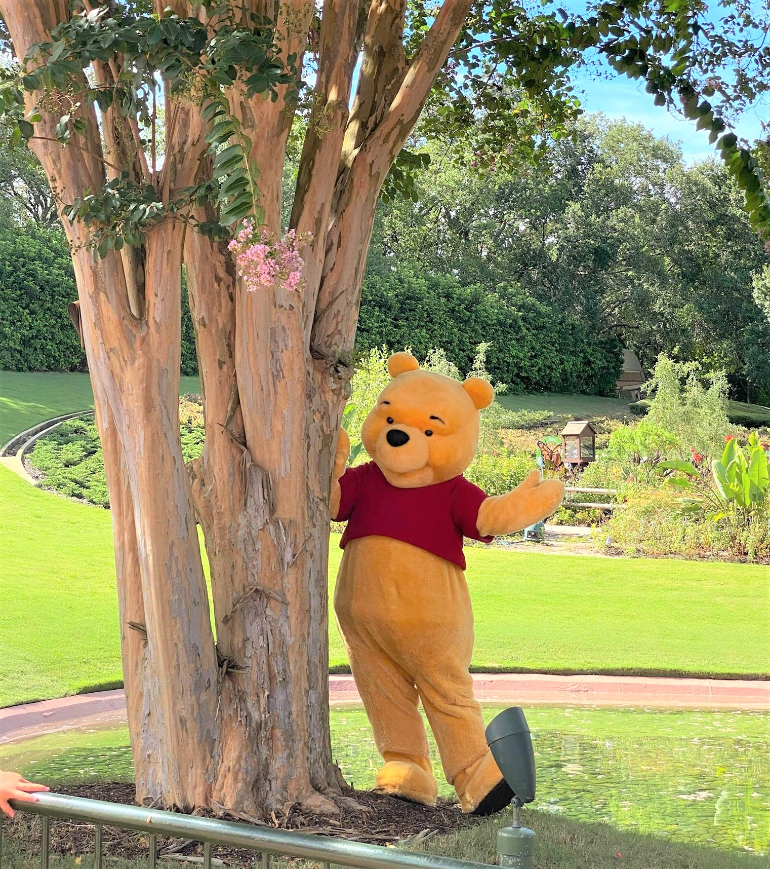 winnie the pooh in front of tree in epcot